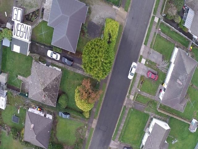 Quadcopter GO VEGANes